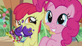 Apple Bloom and Pinkie Pie excited S5E20.png