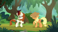 "Autumn Blaze ""am I pronouncing that right?"" S8E23"