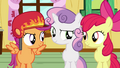Cutie Mark Crusaders confident S03E11.png