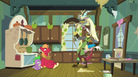 Discord offended at Spike and Big Mac S8E10