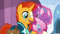 Flurry Heart being levitated onto Sunburst's hoof S6E2.png