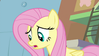 """Fluttershy """"Seabreeze has a point"""" S4E16.png"""