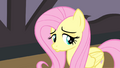 Fluttershy pouting S4E14.png