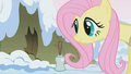 Fluttershy waking up porcupines S1E11.png
