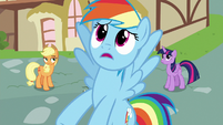 "Rainbow Dash ""I should've been honest with you"" S7E23"