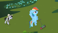 Rainbow Dash 'I have just saved that grass' S2E08