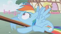 Rainbow Dash -Wait!- S01E04
