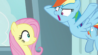 Rainbow Dash yelling at Fluttershy S9E21