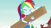 Rainbow holding wooden boards with her eyes closed EG4