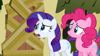 Rarity asking Fluttershy S2E19