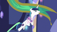 Shining Armor swings from tapestry MLPBGE