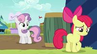 Sweetie Belle notices Apple Bloom S5E17