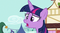 "Twilight Sparkle ""what is it, everypony?"" S7E14"