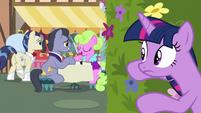 Twilight listens closer to brunch ponies' conversation S7E14
