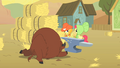 Apple Bumpkin and Jonagold defeat a buffalo S1E21.png