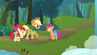 Applejack informing Scootaloo that Rainbow Dash will be meeting them S3E06