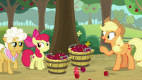 "Applejack theorizing ""or animals"" S9E10"