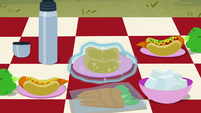 Camp food spread out on picnic blanket S7E16