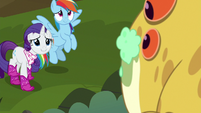 Dash and Rarity look grateful at Bufogren S8E17