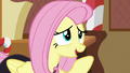 """Fluttershy """"I can help you all have fun"""" S5E21.png"""