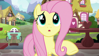 Fluttershy calling out to Dr. Fauna S7E5