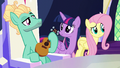 Fluttershy doesn't see Spike anywhere S6E11.png