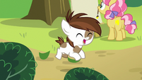 Pipsqueak prancing with joy S7E21