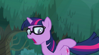 Pony Sci-Twi looks at her cutie mark EGSB