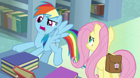 "Rainbow Dash ""created a fake author self"" S9E21"