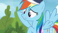 "Rainbow Dash ""her wing was under his"" S6E24.png"