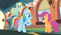 Rainbow Dash -there are no winners- S4E24