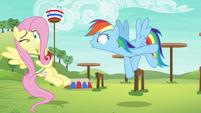 Rainbow Dash shouts --go!-- at Fluttershy S6E18