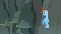 Rainbow Dash smacks into rock wall S2E07