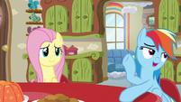 Rainbow Dash talking to Mrs. Shy S6E11