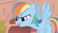 Rainbow Dash talks to the main 6 S1E07.png