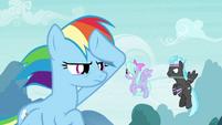 Rainbow Dash with Pegasus team S4E16