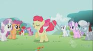 S02E06 Wszyscy patrzą na Apple Bloom