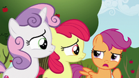 Scootaloo --we should probably find out-- S6E19