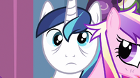 Shining Armor cross eyed S2E26