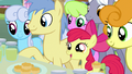"Apple Bloom ""welcome to Ponyville!"" S7E13.png"