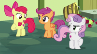 Apple Bloom -the one who is careless!- S8E12
