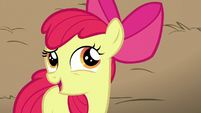 Apple Bloom compliments AJ as being smart S5E17