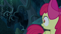 Apple Bloom misses seeing the shadow S5E4