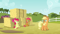 Applejack 'There'll be plenty of time' S3E08.png