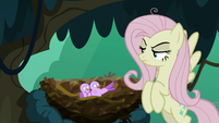 Bird chirping at fake Fluttershy S8E13