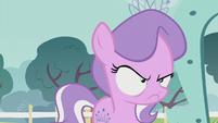 Diamond Tiara looking very annoyed S5E18