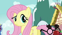 Fluttershy sees Pinkie is nowhere to be found S5E19