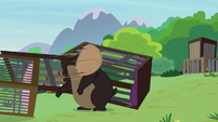 Grizzy bear gets head caught in wicker basket S7E5