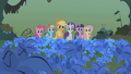 Mane 6 standing in the poison joke S1E09.png