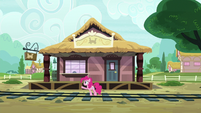 Pinkie fails to stop Maud's train from leaving S7E4